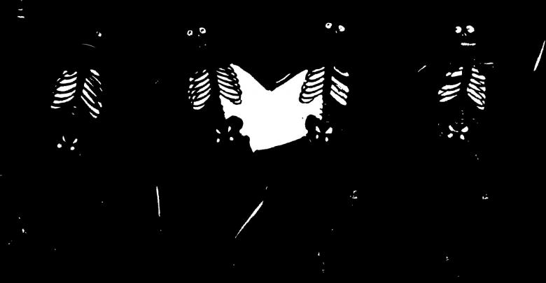Photo of Radiografía de los podemitas: su origen y tipos