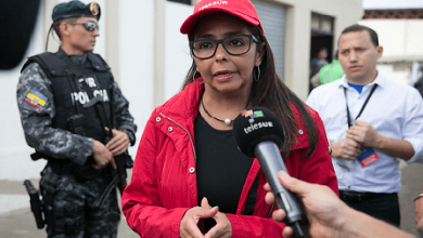 Photo of La crisálida social comunista